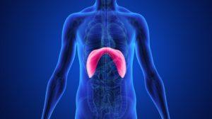 Diaphragm Breathing