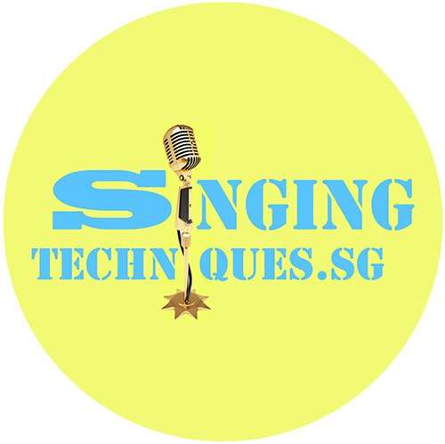 SingingTechniques – Efficient Learning